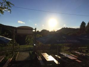 Biergaten Sonne